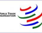WTO move : Pakistani daily calls India powerful