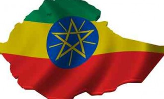 Indian businesses explore Ethiopia for investment opportunities