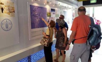 Expo Milano-2015: Pavilion of Uzbekistan continues its work
