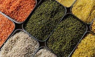 India seeks BRICS support for pulses, oilseeds