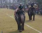 Nepal hosts elephant festival, seeks to revive tourism