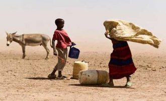 Somalia, South Sudan 'in peril' of famine