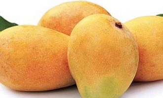 Australia to import Indian mangoes for first time