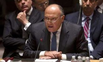 Egypt Assumes the 2018 Presidency of the G77 + China