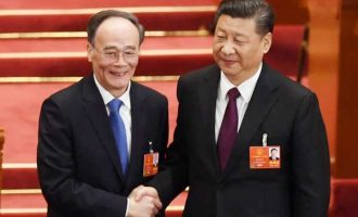 Xi's man, Wang Qishan, elected China's Vice President