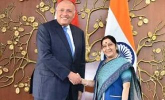 India, Egypt review bilateral ties