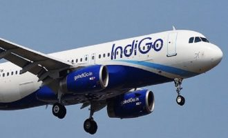 IndiGo, Turkish Airlines enter into codeshare agreement