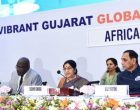 India-Africa ties to redefine international order on egalitarian lines: Sushma Swaraj