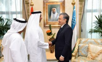 Uzbekistan, UAE agree to enhance trade-economic, investment cooperation