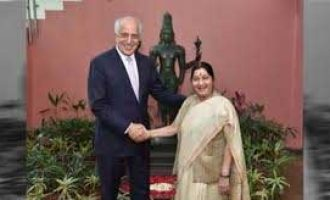Afghanistan's future be decided by its people: India, US