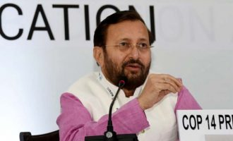 Follow Paris climate process: Javadekar (Interview)