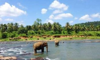 SL launches tourism promotion initiatives with Russia, Ukraine