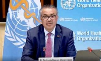 WHO urges joint efforts to prevent future Covid-like pandemic
