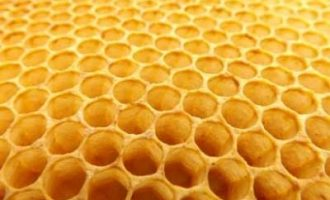 Indian scientists develop noise control absorber mimicking beehives