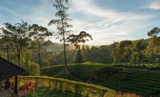 Sri Lanka plans promotion activities overseas to revive tourism