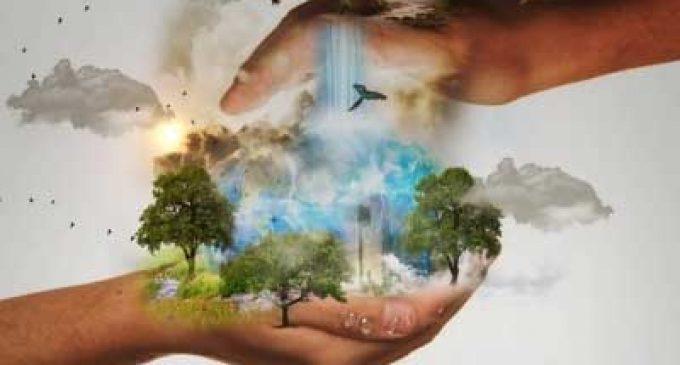 Over 100 nations adopt Kunming Declaration to boost biodiversity